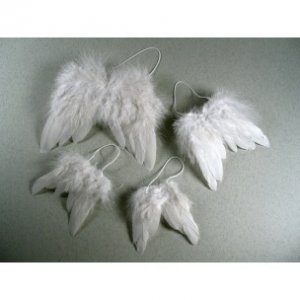 MEYCO - Anjelské krídla